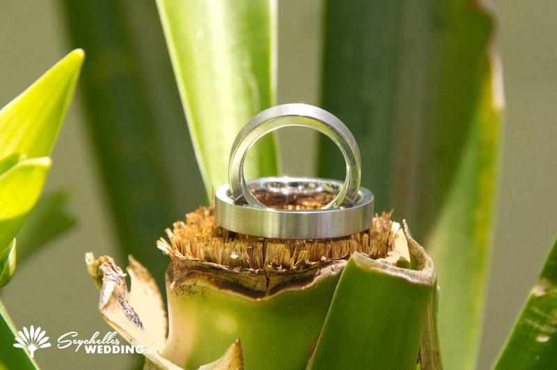 Hochzeit / wedding Silhouette Island Seychelles