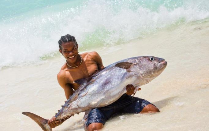 Denis tuna fishing