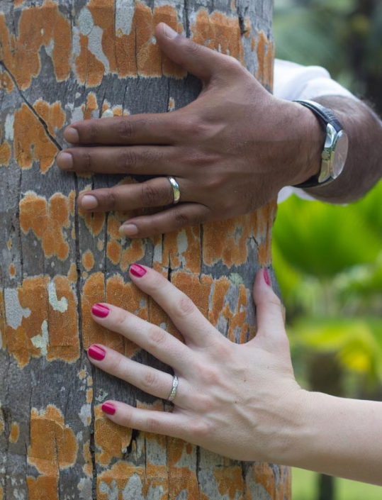 This photo shows couples' hand with wedding rings