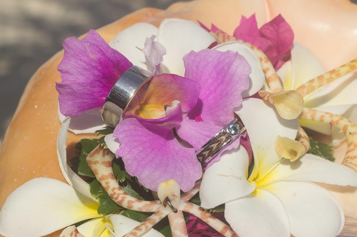 This photo shows wedding rings with sea shell