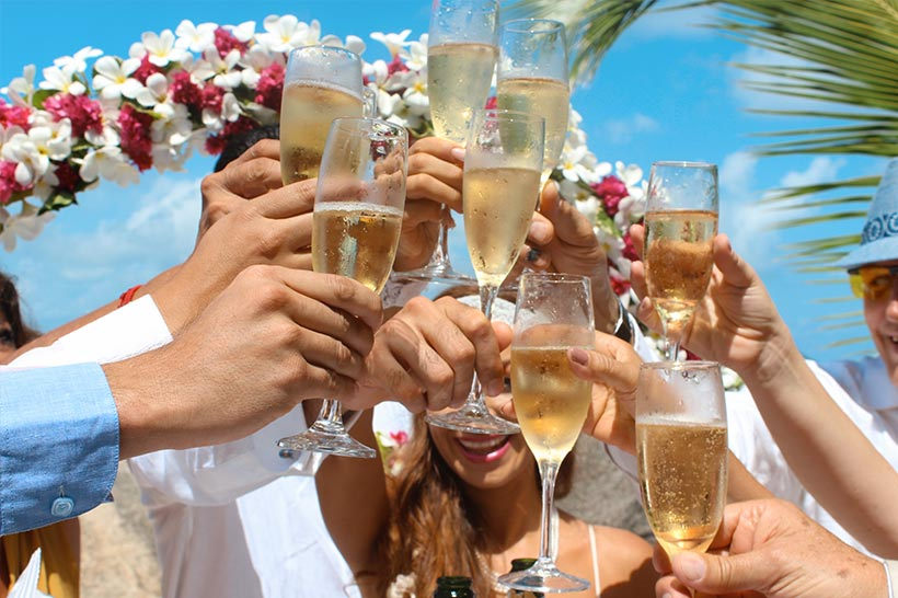 This photo shows a wedding group doing a toast